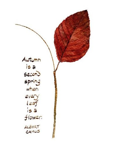 quote-autumn
